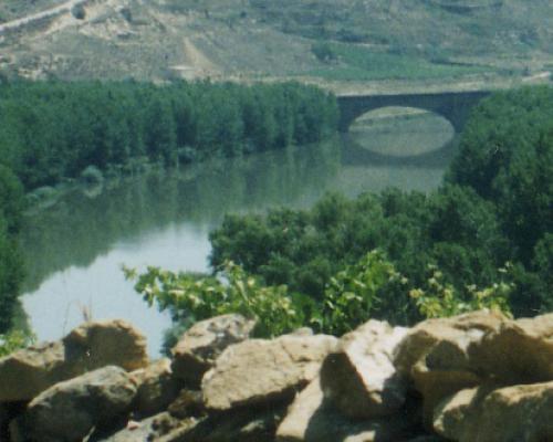 Puente Medieval sobre el Ebro